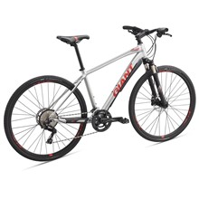 GIANT Roam 1 Disc-M19-M-silver/pure red/charcoal