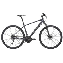 GIANT Roam 2 Disc-M19-S-charcoal/silver